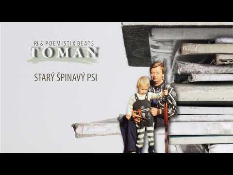 PJ & POEMISTIX BEATS – Starý špinavý psi (Instrumental)