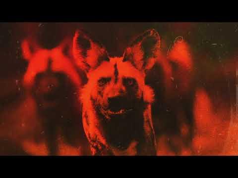 Pro Dillinger & Finn – Hunting Grounds (Vizualizer)