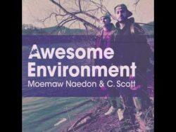Moemaw Naedon & C.Scott – Awesome Environment