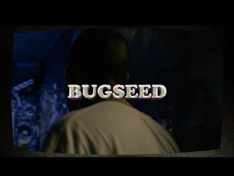 BUGSEED/Ash