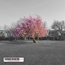 Confucius MC – Somewhere   United Kingdom   paru le 3 septembre 2021  Produced by Keor Met ...