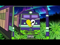 Stank Nitty – Northern Lights  U.S.A  Stank Nitty – Northern Lights Produced by Contrabass ...