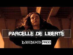 Old School Boom Bap Type Beat РParcelle De Libert̩ (Djeebeats Prod)  Beatmaking & Ins ...