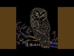 Owl (Instrumental) · Osah  Owl  ℗ Koverbalprod  Cadeau 😉 👉https://osahbeatmaker.koverbalprod.com